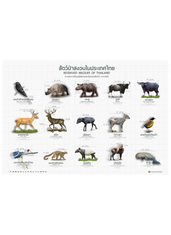 หนังสือภาพสัตว์ป่าสงวน 2535