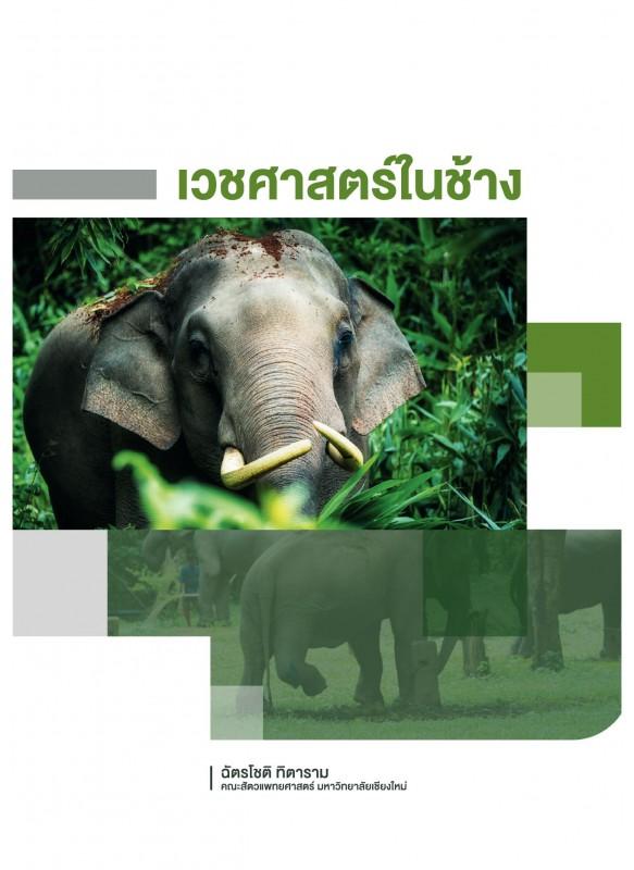 เวชศาสตร์ในช้าง
