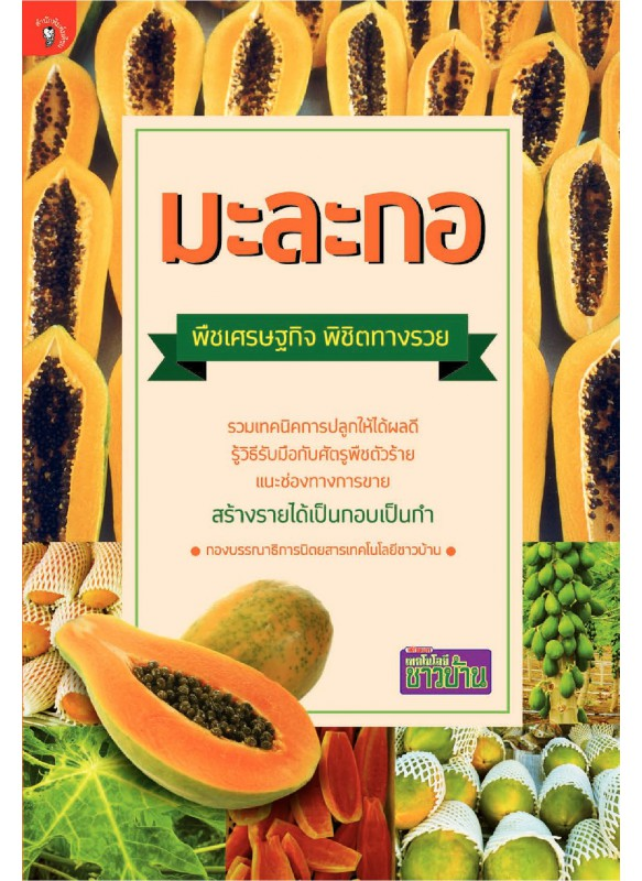 มะละกอ พืชเศรษฐกิจ พิชิตทางรวย